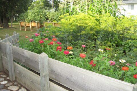 Landscape Contractors in Berkshire