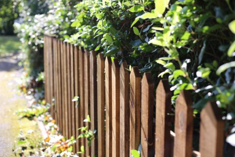 Timber Fencing in Berkshire
